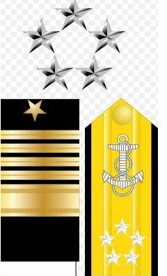 美国的军衔等级及标志是什么(美国警衔等级与职位图详细介绍)-第1张图片