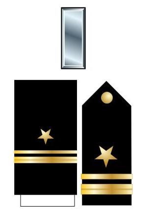 美国的军衔等级及标志是什么(美国警衔等级与职位图详细介绍)-第10张图片