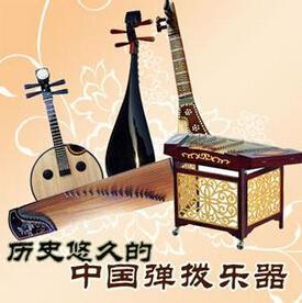 弹拨乐器有哪些(中国十大最难学的乐器)